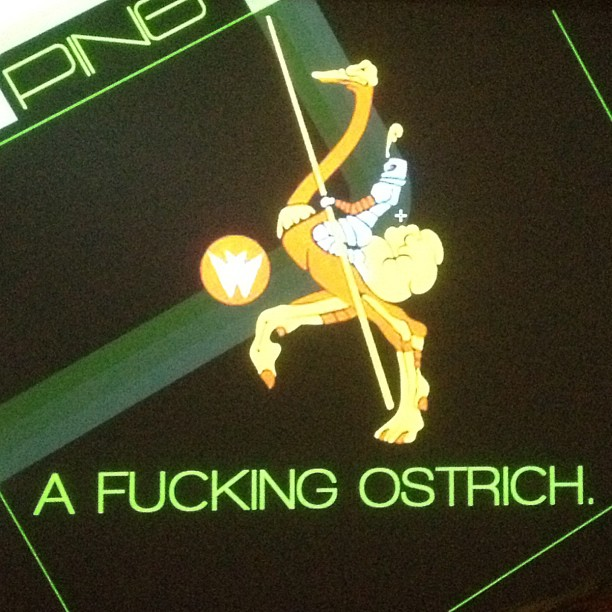 ing - Ping - a fucking ostrich